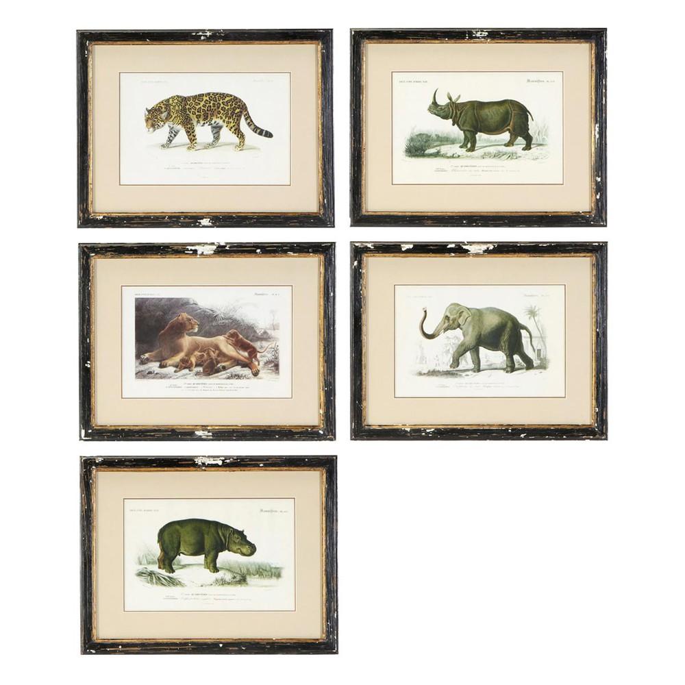 5 cadres animaux effet vieilli 34 x 44 cm histoire for Cadre maison deco