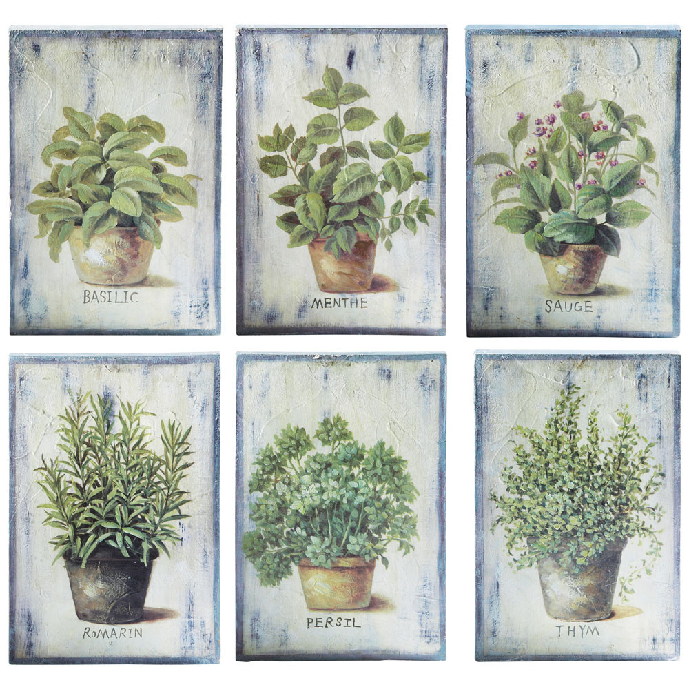 6 tableaux verts 20 x 30 cm aromates maisons du monde for Maison du monde cuadros