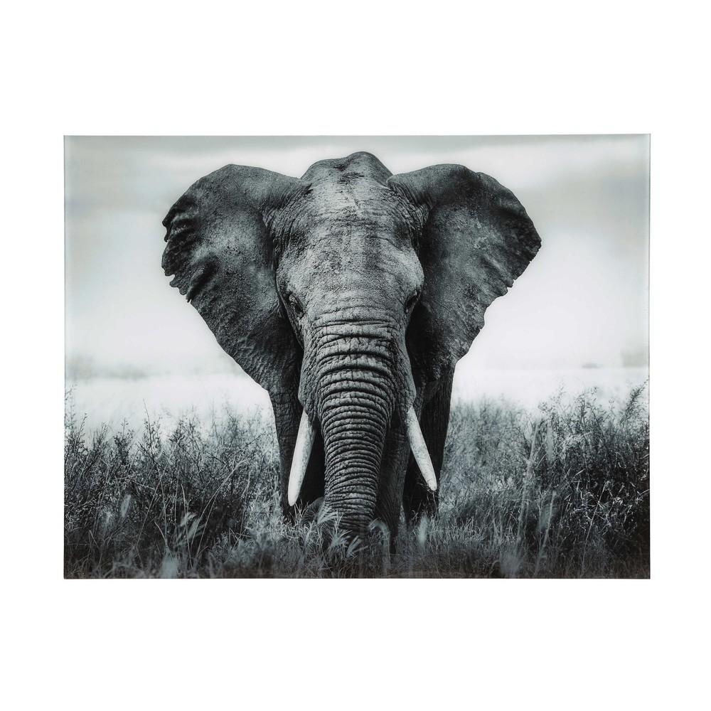 quadro elefante in plexiglas 161 x 123 cm machaka. Black Bedroom Furniture Sets. Home Design Ideas