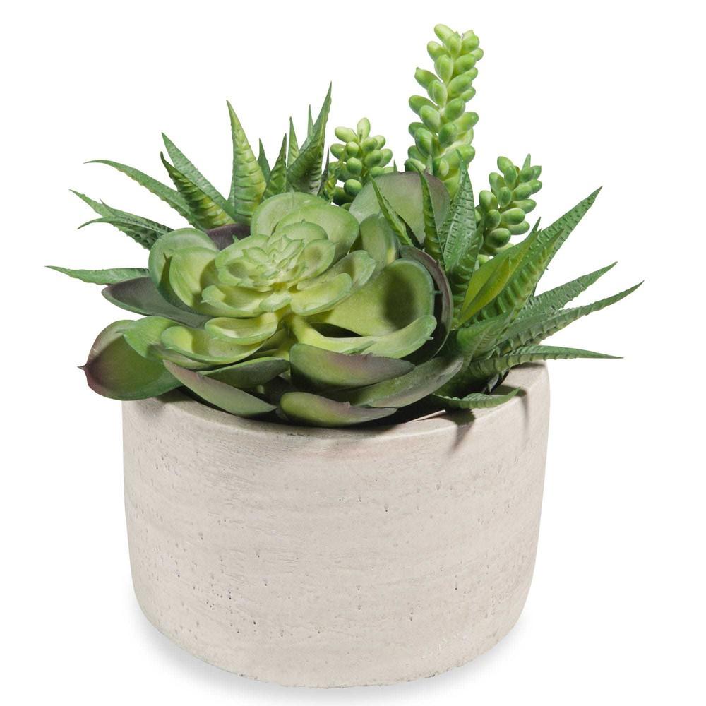 urban artificial succulents in pot maisons du monde. Black Bedroom Furniture Sets. Home Design Ideas